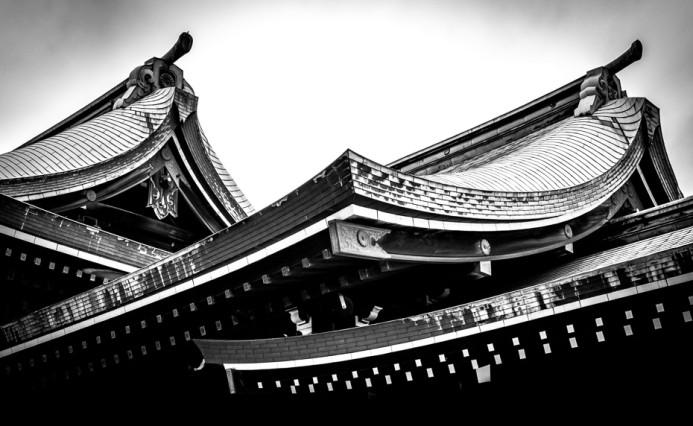Meiji Jingu Temple Rooftops