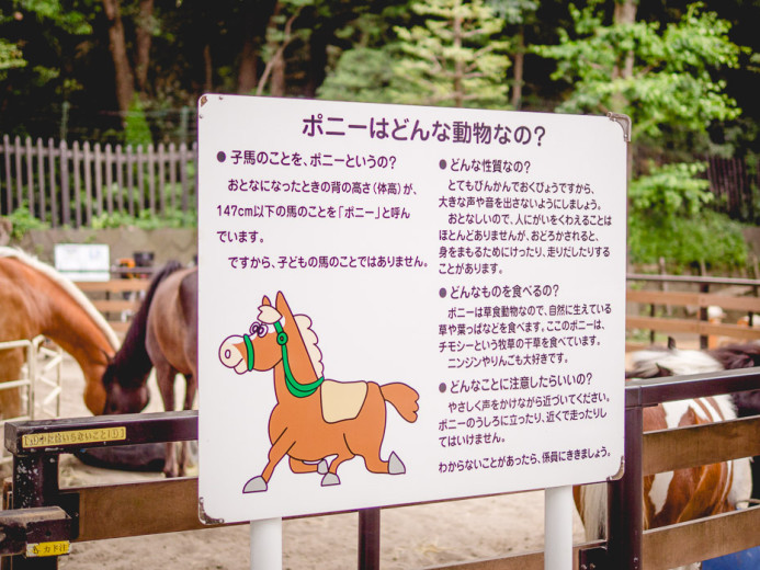 Yoyogi Horses