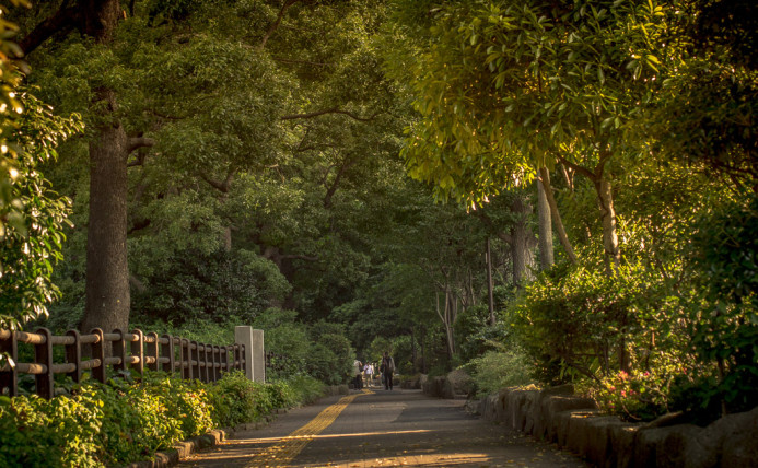 Into the Heart of Hibiya Park