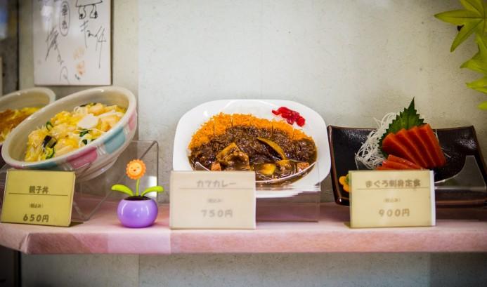 Model Food