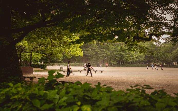 Baseball at the Palace